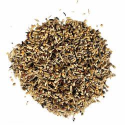 Agrisementi-Lebbioli-Mangimi-Composti-Miscela-Semi-Condizionati-Spinus