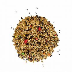 Agrisementi-Lebbioli-Mangimi-Speciali-Miscela-Canarino-Linea Colorbirds